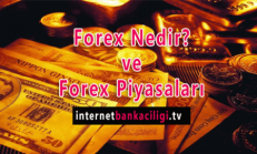 Forex Nedir? ve Forex Piyasaları
